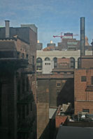 chicago_roof_landscape_2_200.jpg